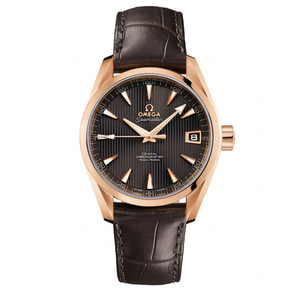 오메가시계 OMEGA Seamaster Automatic Mens Watch 231.53.42.21.06.001